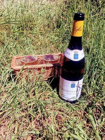 Puligny Montrachet in the park!
