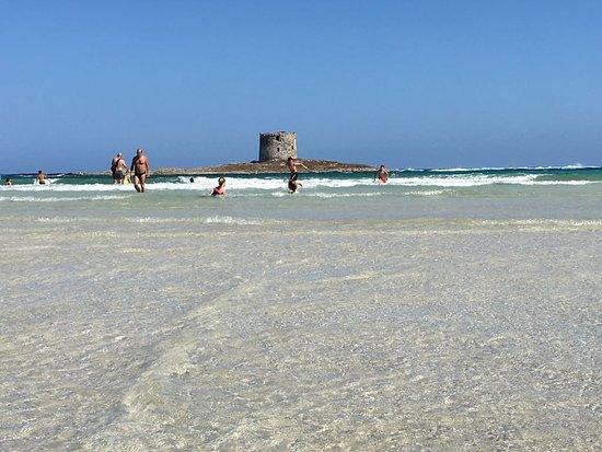 La Pelosa Beach照片