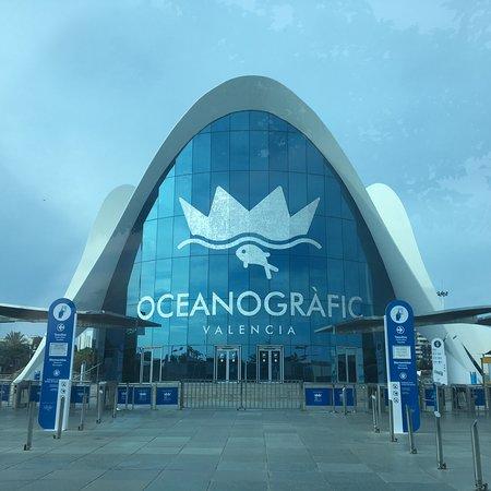 巴伦西亚海洋公园照片