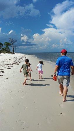Alligator Point, FL: looking for sea life - Bald Pt St Park