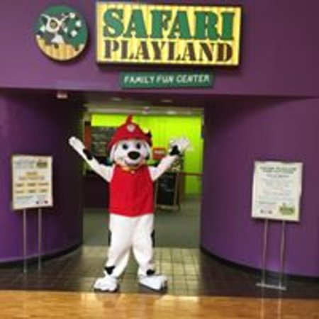 Safari Playland - Family Fun Center