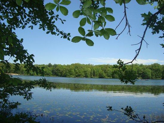 Ely Lake Park