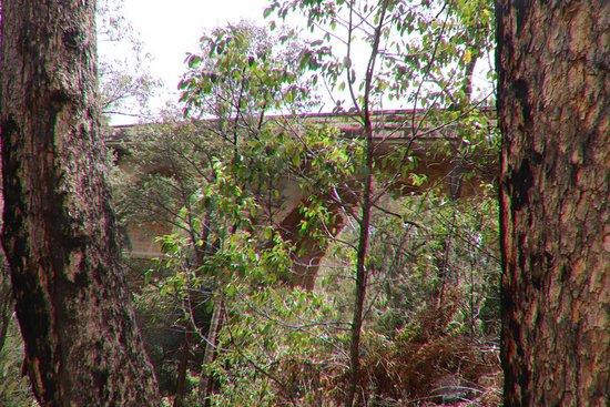 Lapstone Zig Zag: We explored around the bridge