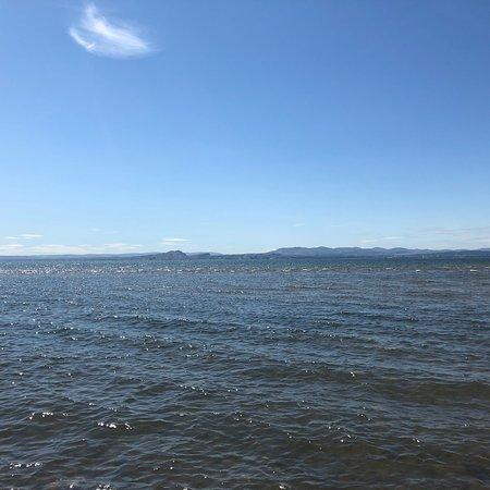 Pettycur Beach: photo7.jpg