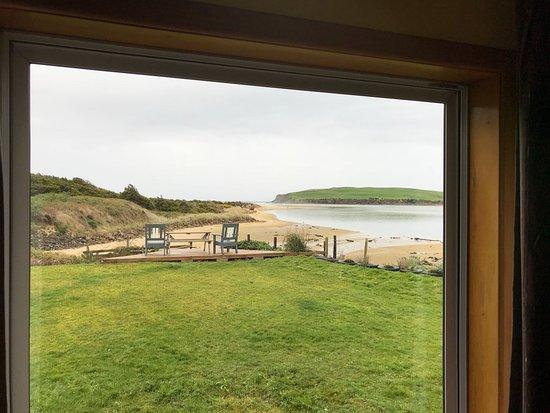 Surat Bay, Новая Зеландия: Blick aus unserem Fenster