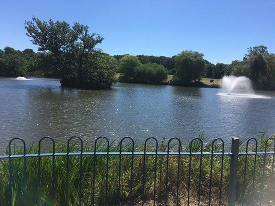 Lake Meadows