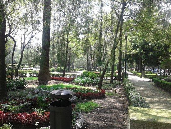 Lincoln Park照片