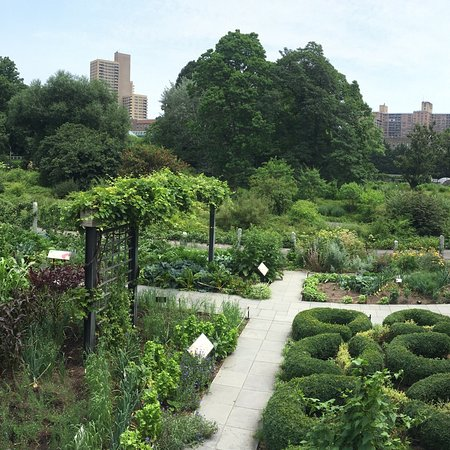 Brooklyn Botanic Garden - 2018 Reviews: All You Need to Know Before ...