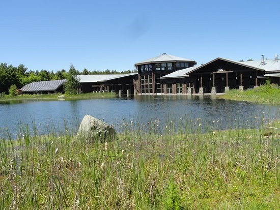 The Wild Center: Exterior shot with reflecting pond.
