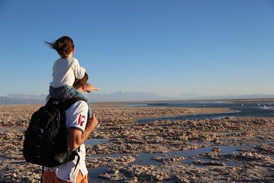 San Pedro de Atacama, Chile: Laguna Chaxa