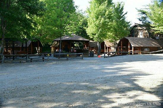 Candler, Carolina del Norte: DSC_0178_large.jpg