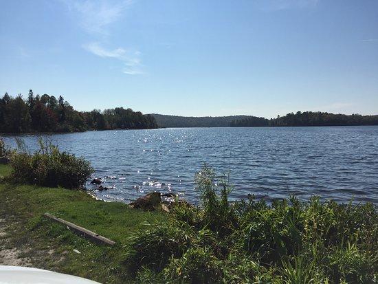 Horne Lake Trail: Horne Lake