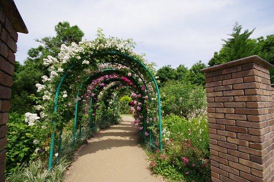 Kana Garden Photo