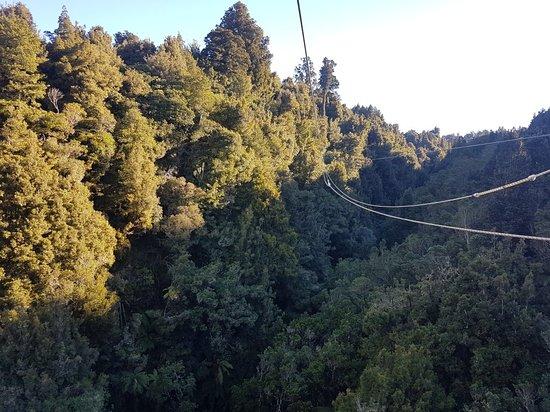 Rotorua Canopy Tours: 20180706_150405_large.jpg
