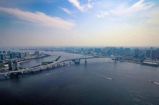 Tour privato in elicottero a Tokyo