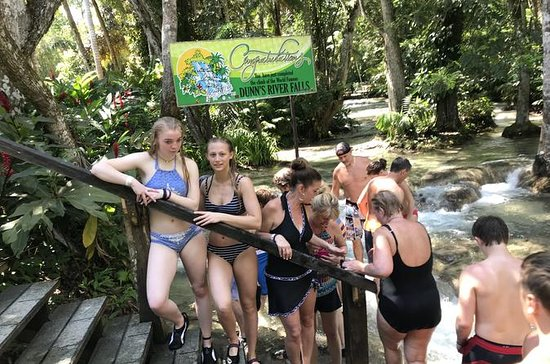 Combo Tour Dunn's River Falls y...