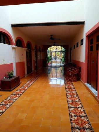 Luz En Yucatan: 20180619_082105_large.jpg