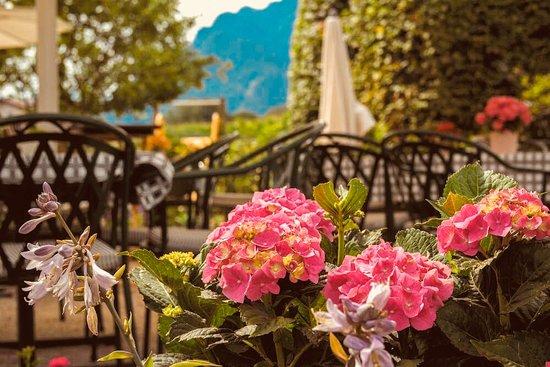 Wals, Austria: Sommer, Sonne, genießen ...