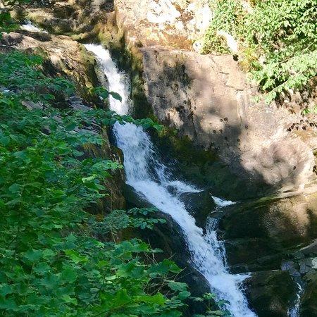 英格尔顿瀑布步道照片