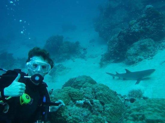 Enjoy Cyprus Diving Centre