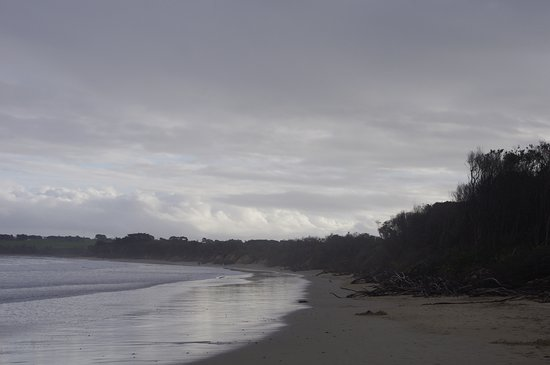 Noosa National Park: Beach past National Park