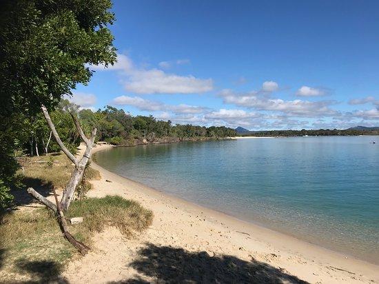 Noosa National Park: Beach edge of the Park