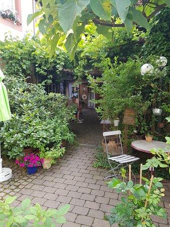 Schweigen-Rechtenbach, Германия: 20180707_085828_large.jpg