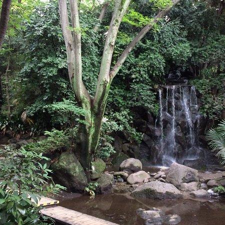 Nanushinotaki Park Foto