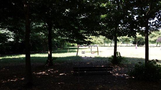Parco della Vernavola照片