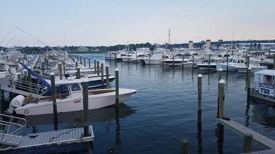 Brielle, Nueva Jersey: The view from the patio