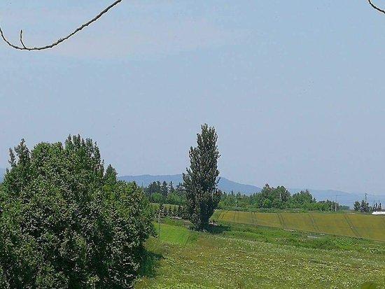 亚斗梦之丘照片