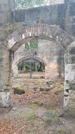 Bulow Plantation Ruins Historic State Park: 20180706_141257_large.jpg