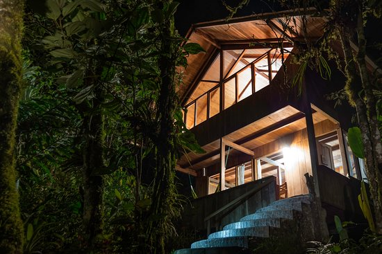 Casa Divina Lodge: One of our cabins at night.