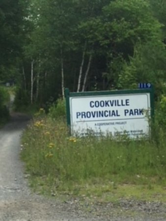 Bridgewater, Canada: Sign at park, left of sign is the trail