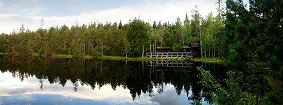 Zlate Hory, Τσεχική Δημοκρατία: Velké mechové jezírko