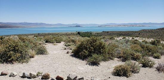 Mono Basin Scenic Area Visitor Center照片
