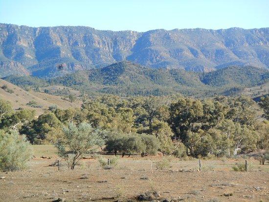 Flinders Ranges National Park照片