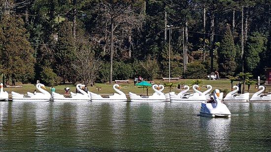 Lago Negro照片