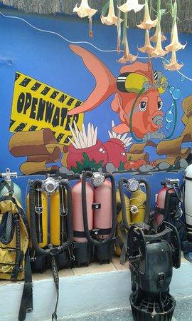 Openwater La Herradura: zona de equipos históricos-pequeño museo.