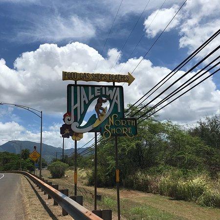 Hawaii Convertible Tours: photo2.jpg