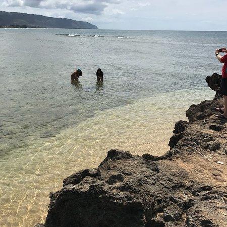 Hawaii Convertible Tours: photo3.jpg