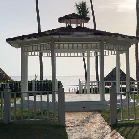 The Level at Meliá Caribe Beach照片