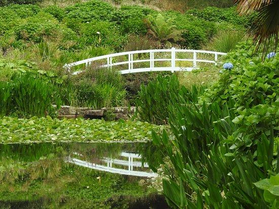 特雷巴花园照片
