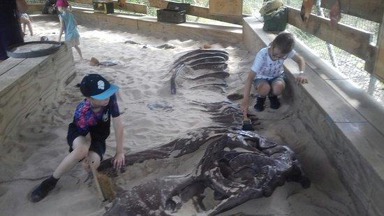 West Midland Safari Park: A couple of the children (both aged 10) digging for dinosaur bones.