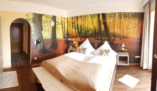 Herzogsreut, Γερμανία: The room