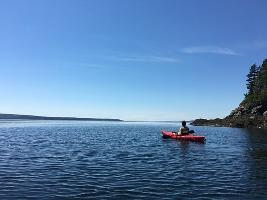 Surry, ME: Kayaking in the bay right in front of the Wave Walker