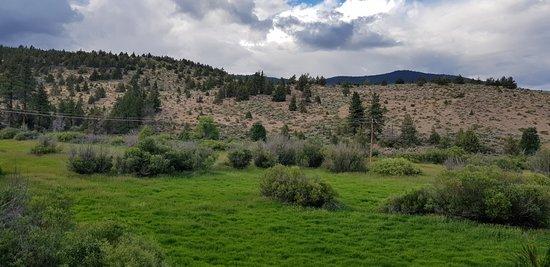 תמונה מSusanville Ranch Park