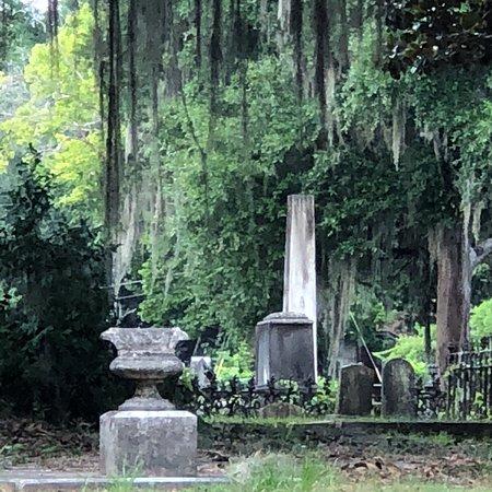 Old Live Oak Cemetery: photo1.jpg