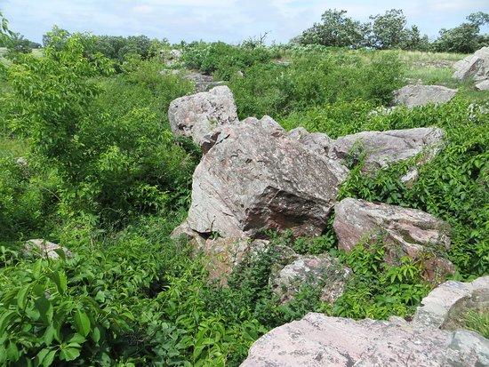 Circle Trail: rocks amongst the fields