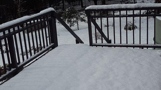 Moina, Australie : Property Grounds - Snow
